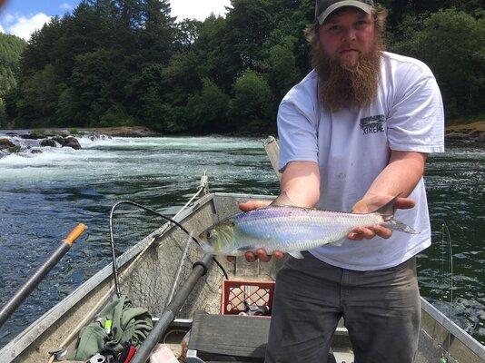 Umpqua River Fishing Reports