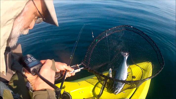 Depoe Bay Fishing Reports