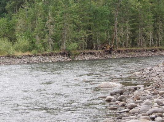 middle-fork-willamette-river3.jpg