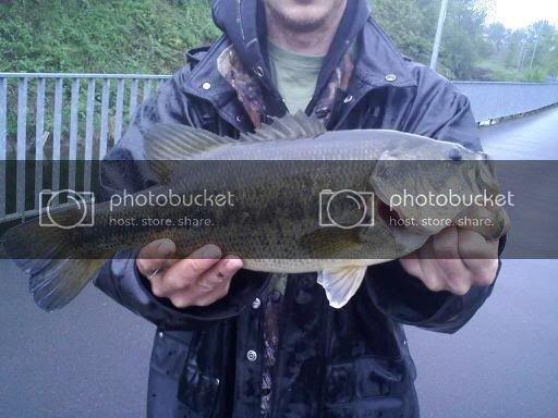 bass2010.jpg