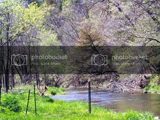 riverfence242210.jpg