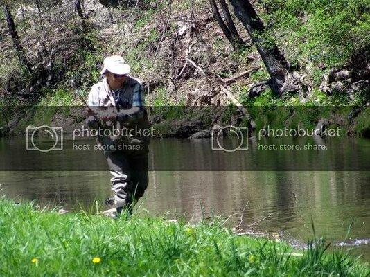 fishfight142210.jpg
