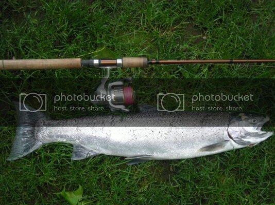 2010fishingpicsmoreSteelies004.jpg