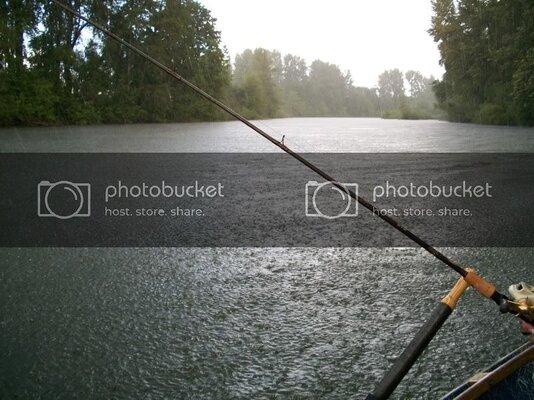 fish010.jpg