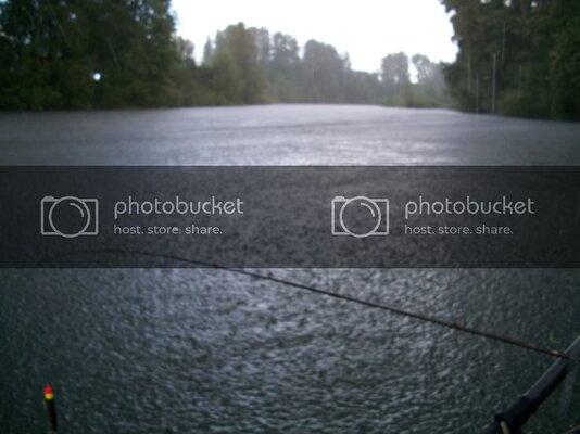 fish008.jpg