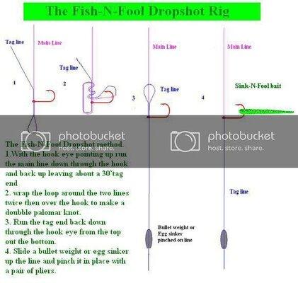 Thefish-N-FoolDropshot-1.jpg