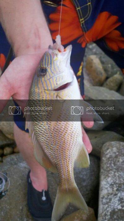 2011-06-01_16-55-00_936.jpg