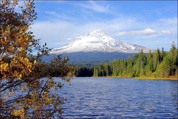 trillium-lake-fishing.jpg