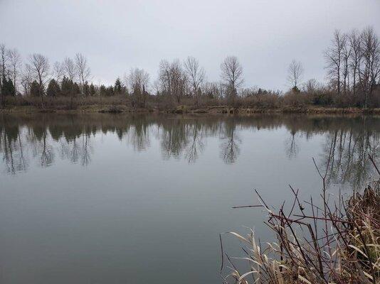 Alton Baker Canal Fishing Reports 2021